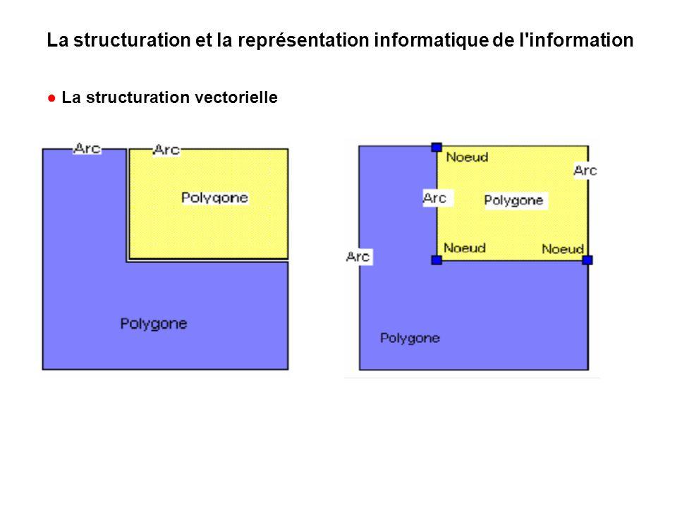 La structuration et la représentation informatique de l information La structuration vectorielle
