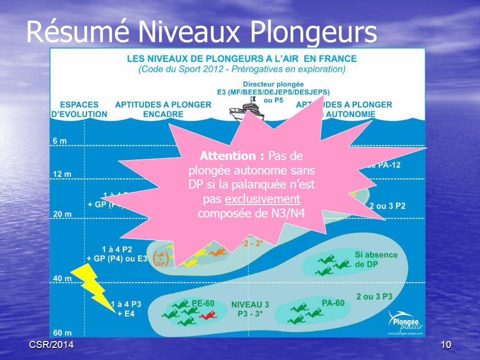 CSR/201410 Résumé Niveaux Plongeurs Attention : Pas de plongée autonome sans DP si la palanquée nest pas exclusivement composée de N3/N4