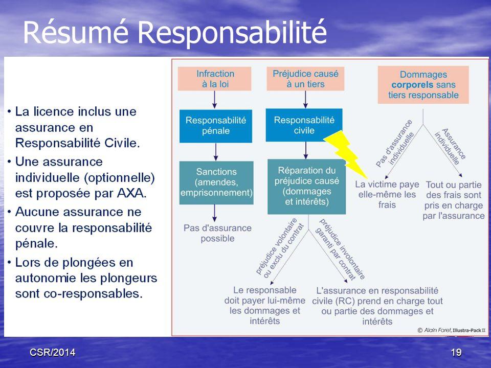 CSR/201419 Résumé Responsabilité