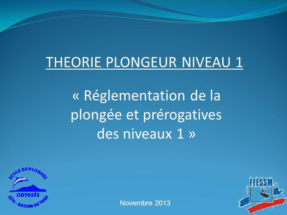 « Réglementation de la plongée et prérogatives des niveaux 1 » THEORIE PLONGEUR NIVEAU 1 Novembre 2013
