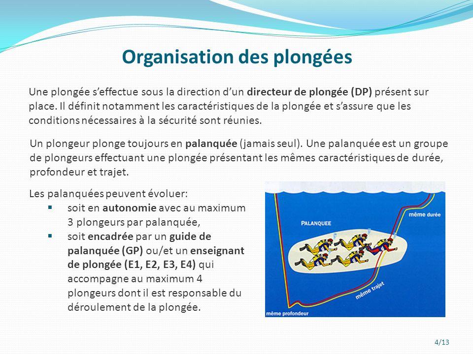 4/13 Organisation des plongées Une plongée seffectue sous la direction dun directeur de plongée (DP) présent sur place.