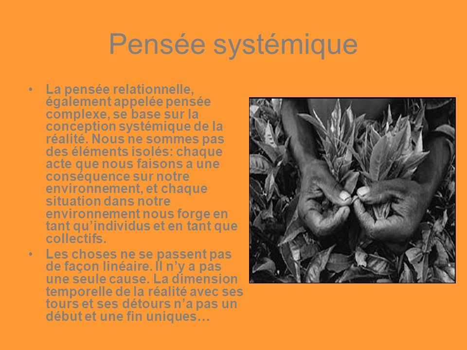 Pensée systémique La pensée relationnelle, également appelée pensée complexe, se base sur la conception systémique de la réalité. Nous ne sommes pas d