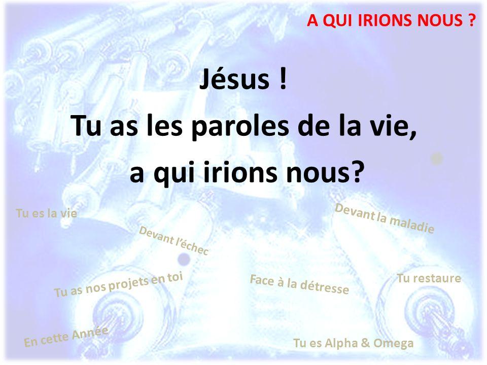 A QUI IRIONS NOUS ? Jésus ! Tu as les paroles de la vie, a qui irions nous? Tu as nos projets en toi En cette Année Face à la détresse Devant la malad