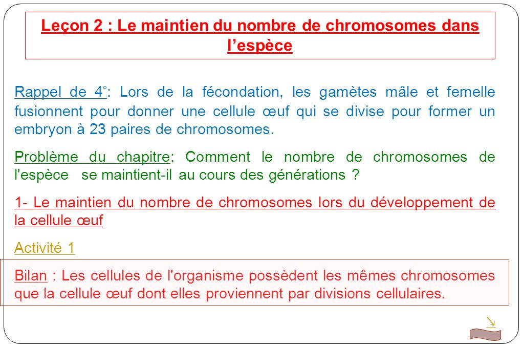 Leçon 2 : Le maintien du nombre de chromosomes dans lespèce Rappel de 4°: Lors de la fécondation, les gamètes mâle et femelle fusionnent pour donner une cellule œuf qui se divise pour former un embryon à 23 paires de chromosomes.