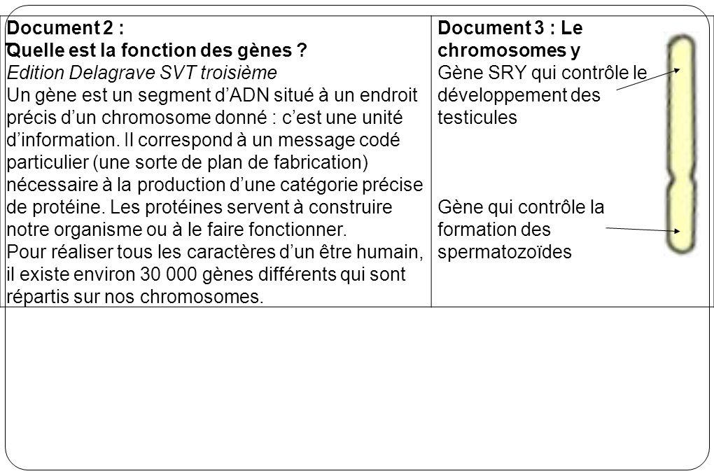 Document 2 : Quelle est la fonction des gènes ? Edition Delagrave SVT troisième Un gène est un segment dADN situé à un endroit précis dun chromosome d
