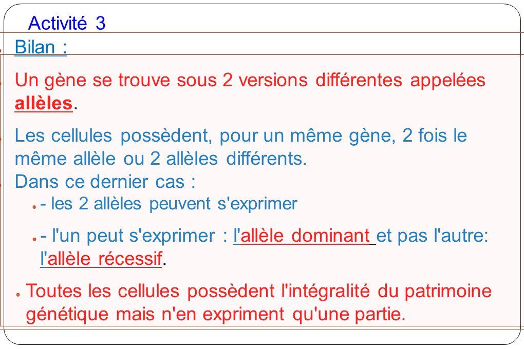 Activité 3 Bilan : Un gène se trouve sous 2 versions différentes appelées allèles. Les cellules possèdent, pour un même gène, 2 fois le même allèle ou