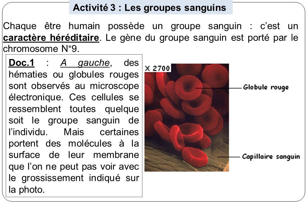 Activité 3 : Les groupes sanguins Chaque être humain possède un groupe sanguin : cest un caractère héréditaire. Le gène du groupe sanguin est porté pa