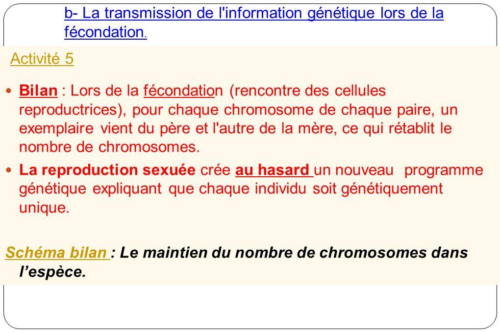 b- La transmission de l'information génétique lors de la fécondation. Activité 5 Bilan : Lors de la fécondation (rencontre des cellules reproductrices