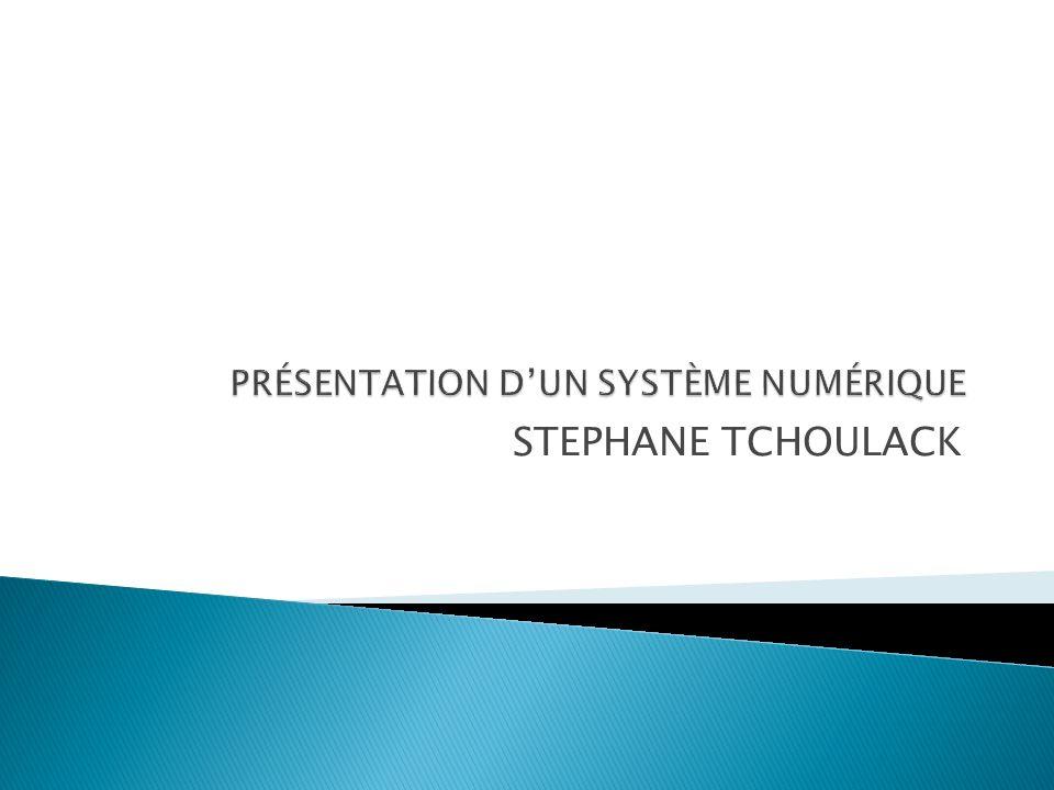 STEPHANE TCHOULACK