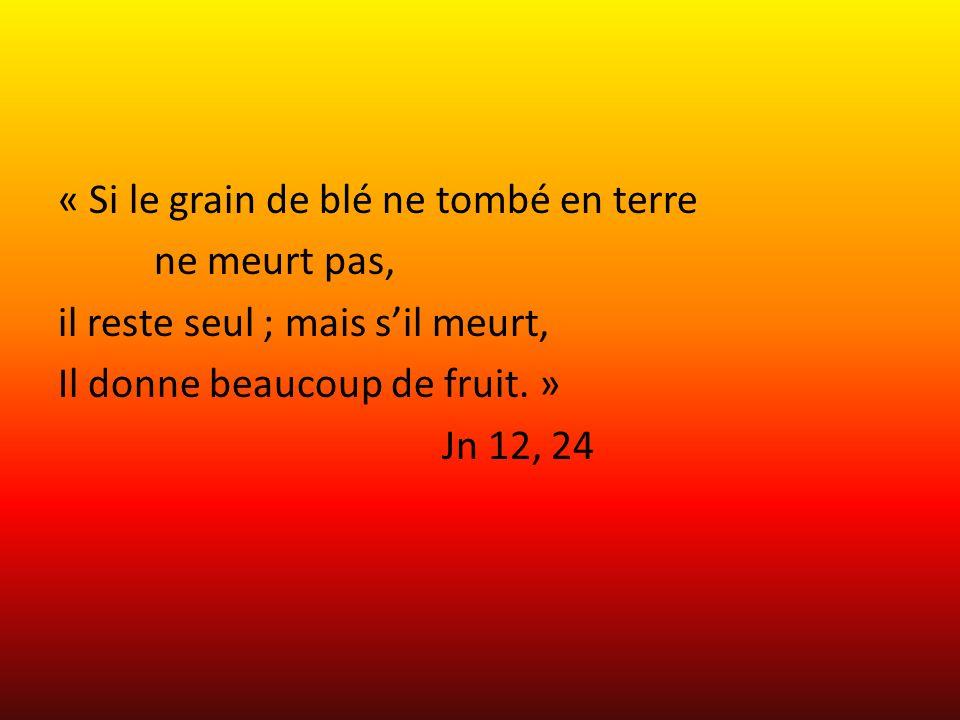 « Si le grain de blé ne tombé en terre ne meurt pas, il reste seul ; mais sil meurt, Il donne beaucoup de fruit. » Jn 12, 24