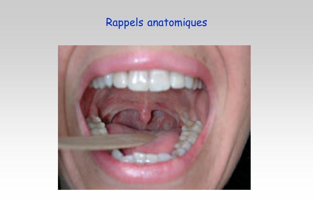Cancer amygdale : virus HPV Cancer du sinus ethmoïdal : poussière de bois (maladie professionnelle)