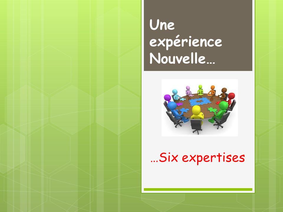 Une expérience Nouvelle… …Six expertises
