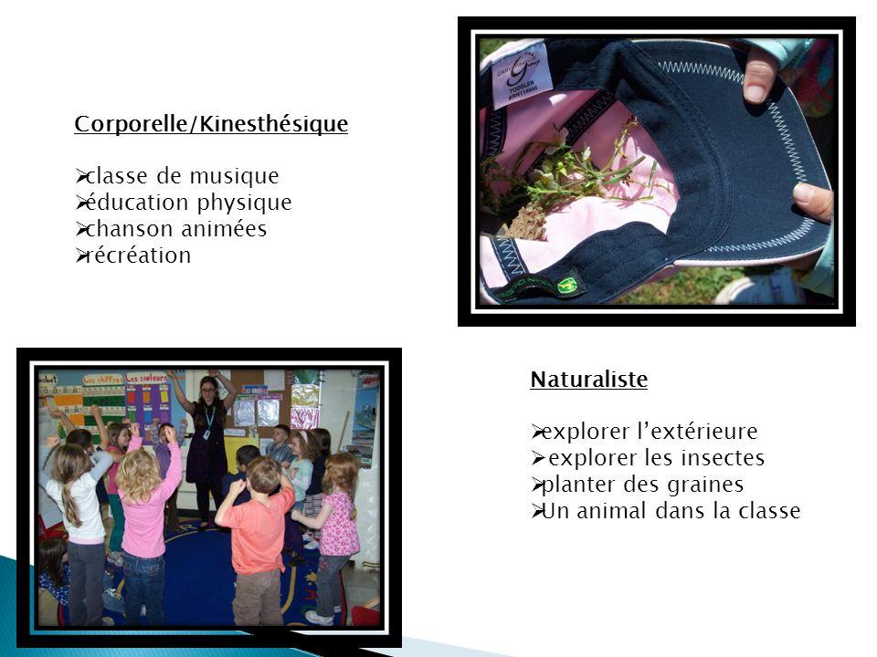 Corporelle/Kinesthésique classe de musique éducation physique chanson animées récréation Naturaliste explorer lextérieure explorer les insectes planter des graines Un animal dans la classe