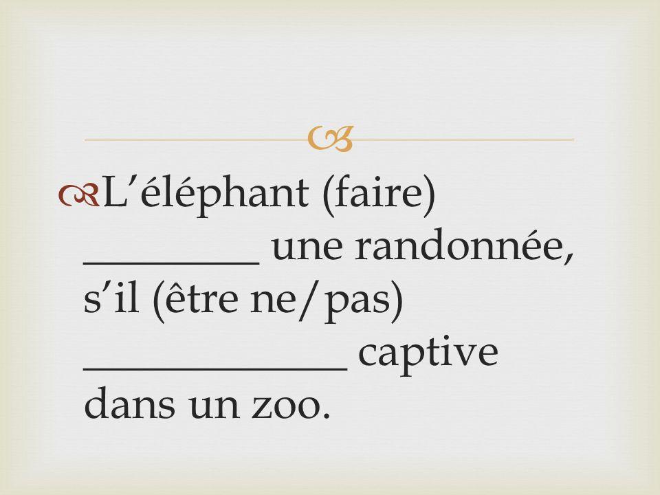 Léléphant (faire) ________ une randonnée, sil (être ne/pas) ____________ captive dans un zoo.