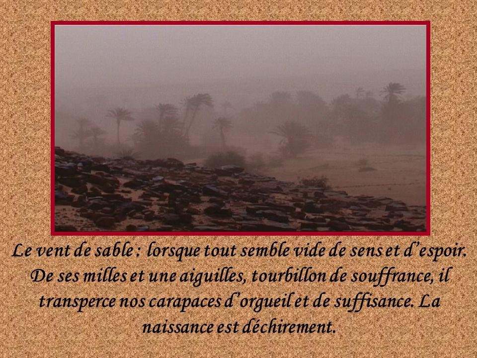 Le vent de sable : lorsque tout semble vide de sens et despoir.
