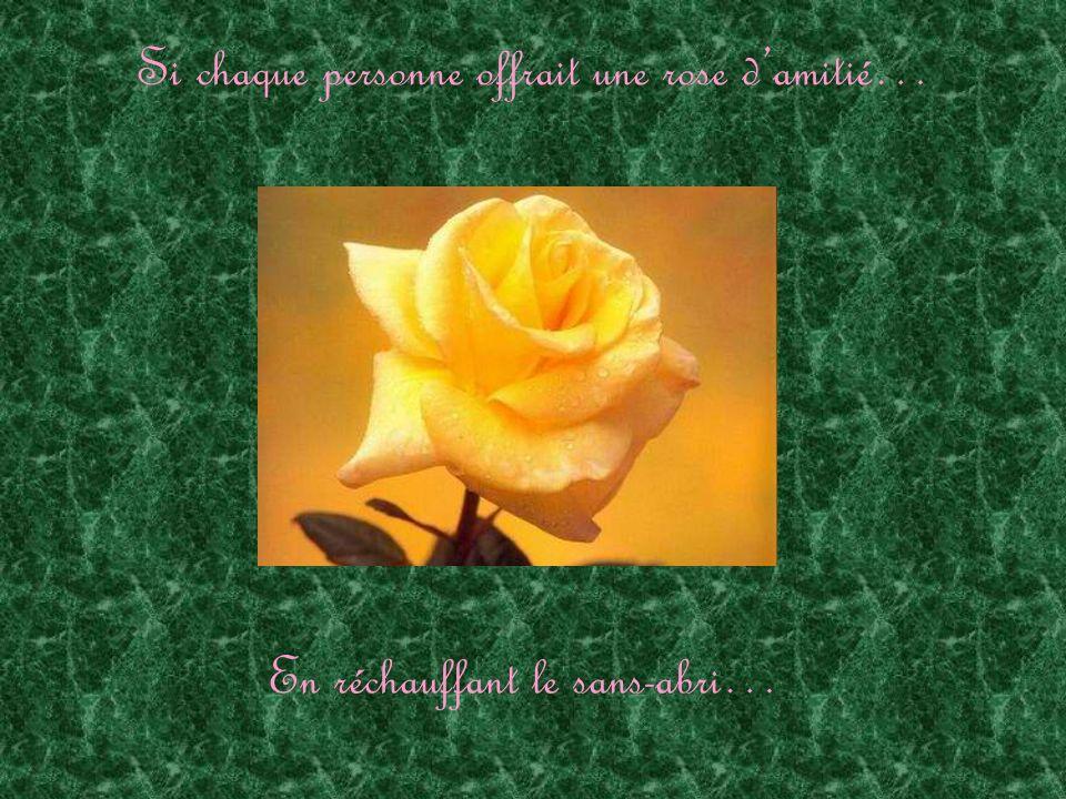 Si chaque personne offrait une rose damitié… En aimant le mal-aimé…