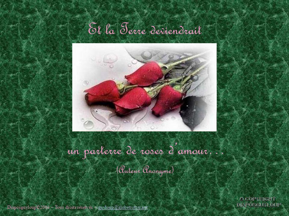 Si chaque personne offrait une rose damitié… Alors, tout doucement la paix descendrait…