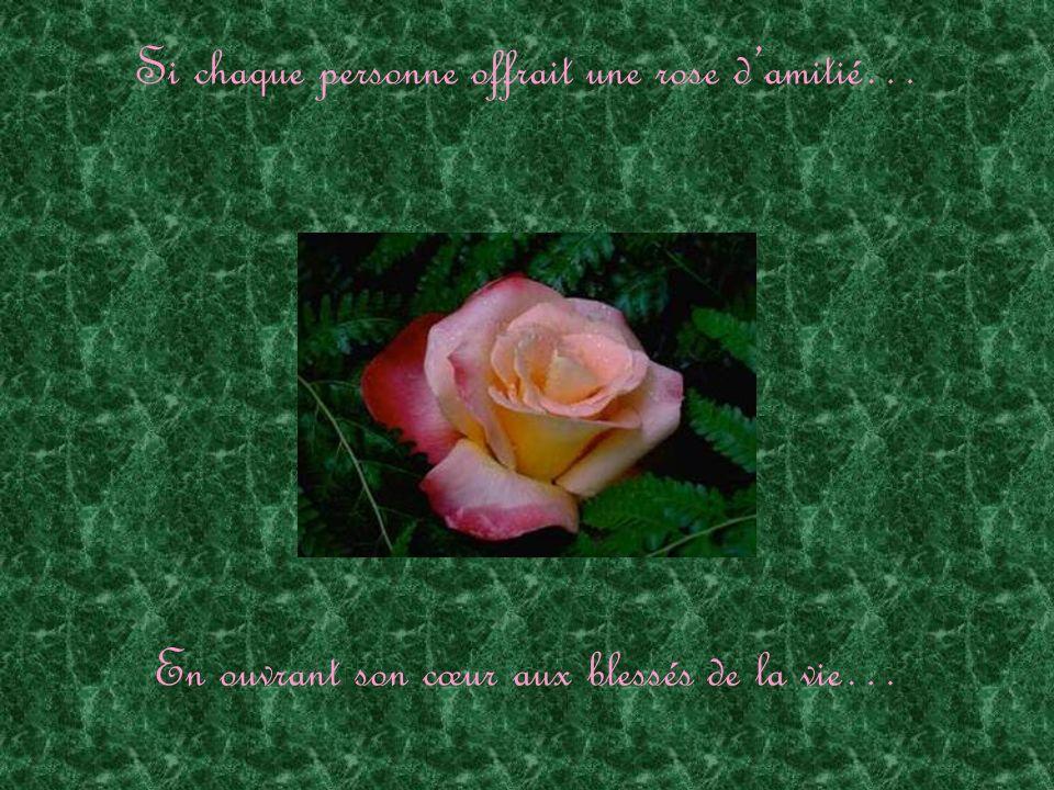 Si chaque personne offrait une rose damitié… En essuyant une larme à lincompris…
