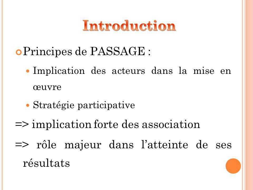 Principes de PASSAGE : Implication des acteurs dans la mise en œuvre Stratégie participative => implication forte des association => rôle majeur dans latteinte de ses résultats