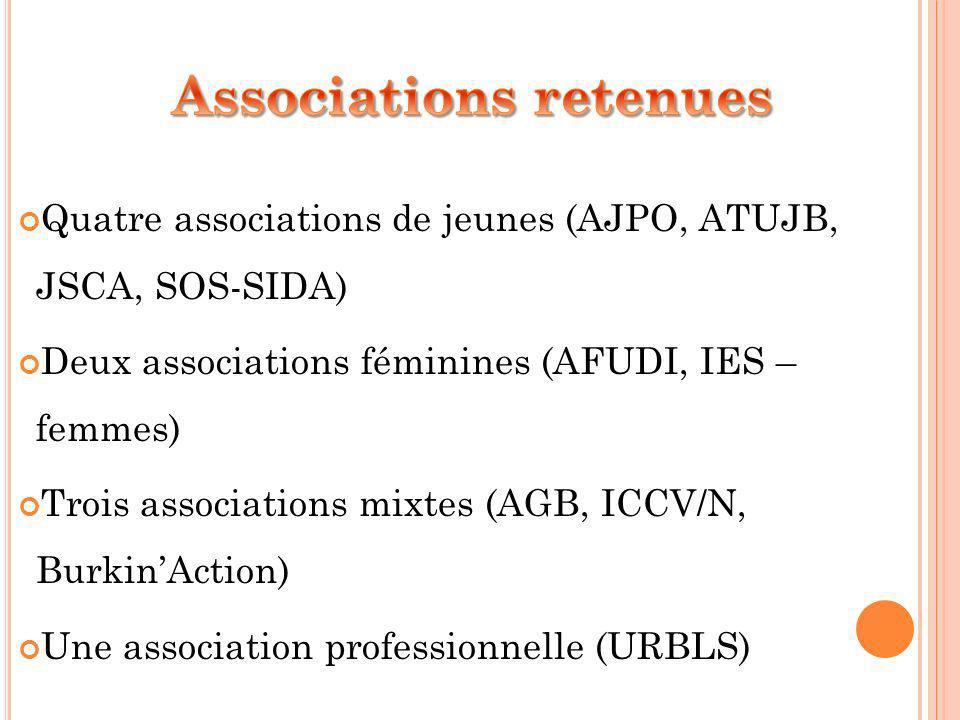 Quatre associations de jeunes (AJPO, ATUJB, JSCA, SOS-SIDA) Deux associations féminines (AFUDI, IES – femmes) Trois associations mixtes (AGB, ICCV/N, BurkinAction) Une association professionnelle (URBLS)