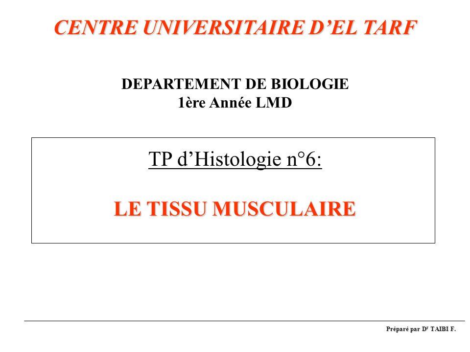 CENTRE UNIVERSITAIRE DEL TARF LE TISSU MUSCULAIRE CENTRE UNIVERSITAIRE DEL TARF DEPARTEMENT DE BIOLOGIE 1ère Année LMD TP dHistologie n°6: LE TISSU MU