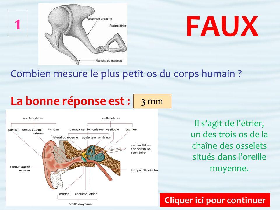 8 Cliquer ici pour continuer FAUX Combien dos compte le corps humain adulte .
