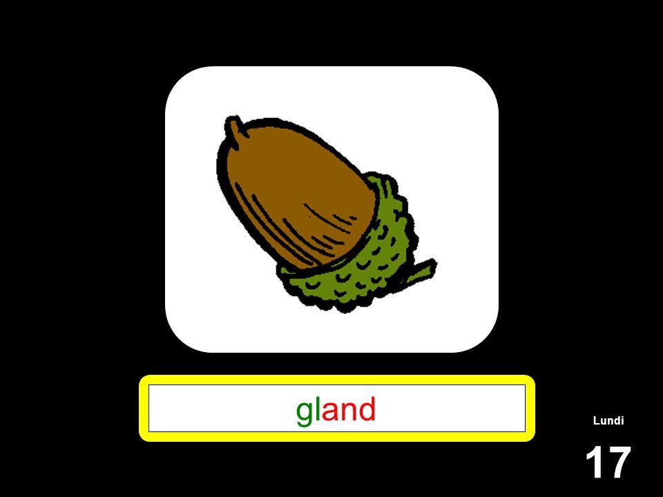 Lundi 17 gland