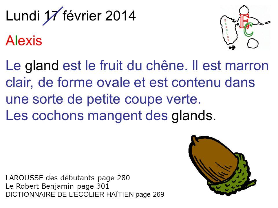 Lundi 17 février 2014 Alexis Le gland est le fruit du chêne. Il est marron clair, de forme ovale et est contenu dans une sorte de petite coupe verte.