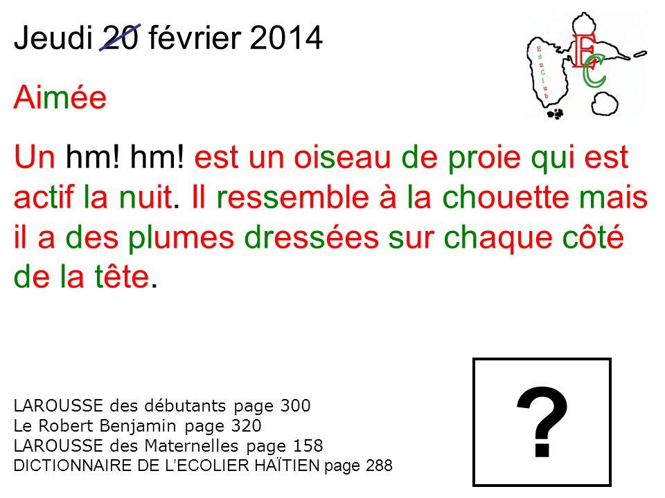 Jeudi 20 février 2014 Aimée Un hm! hm! est un oiseau de proie qui est actif la nuit. Il ressemble à la chouette mais il a des plumes dressées sur chaq