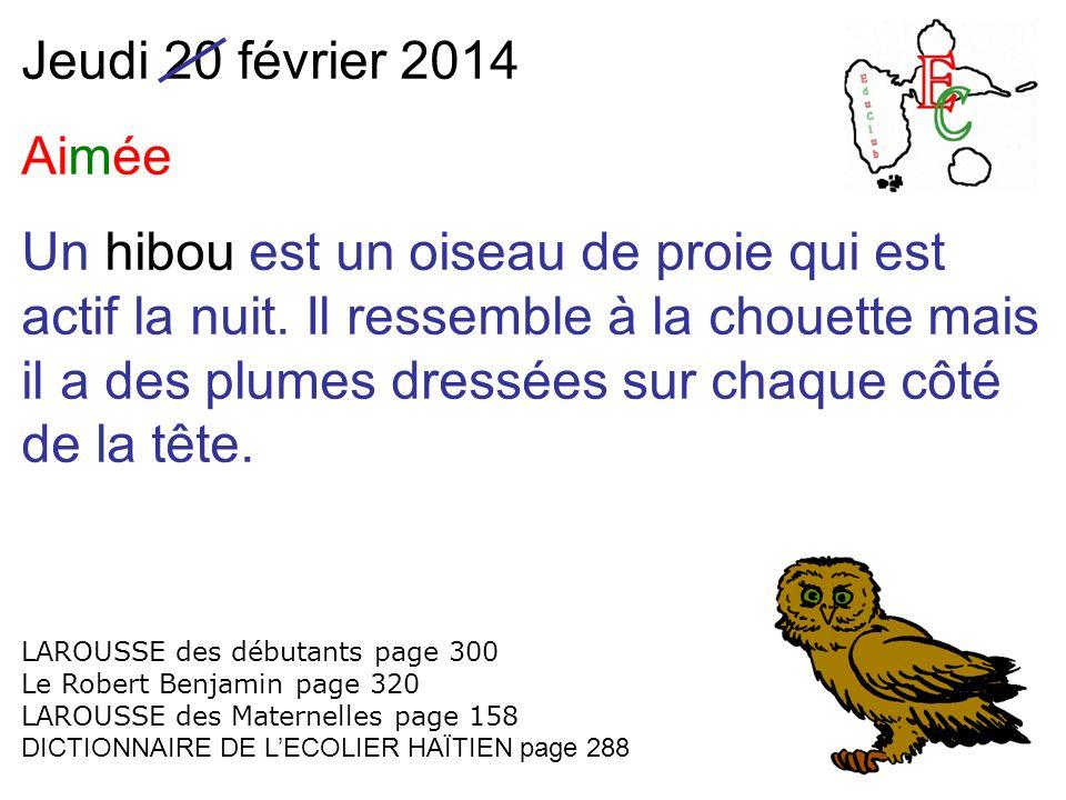 Jeudi 20 février 2014 Aimée Un hibou est un oiseau de proie qui est actif la nuit. Il ressemble à la chouette mais il a des plumes dressées sur chaque