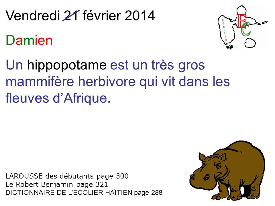 Vendredi 21 février 2014 Damien Un hippopotame est un très gros mammifère herbivore qui vit dans les fleuves dAfrique. LAROUSSE des débutants page 300