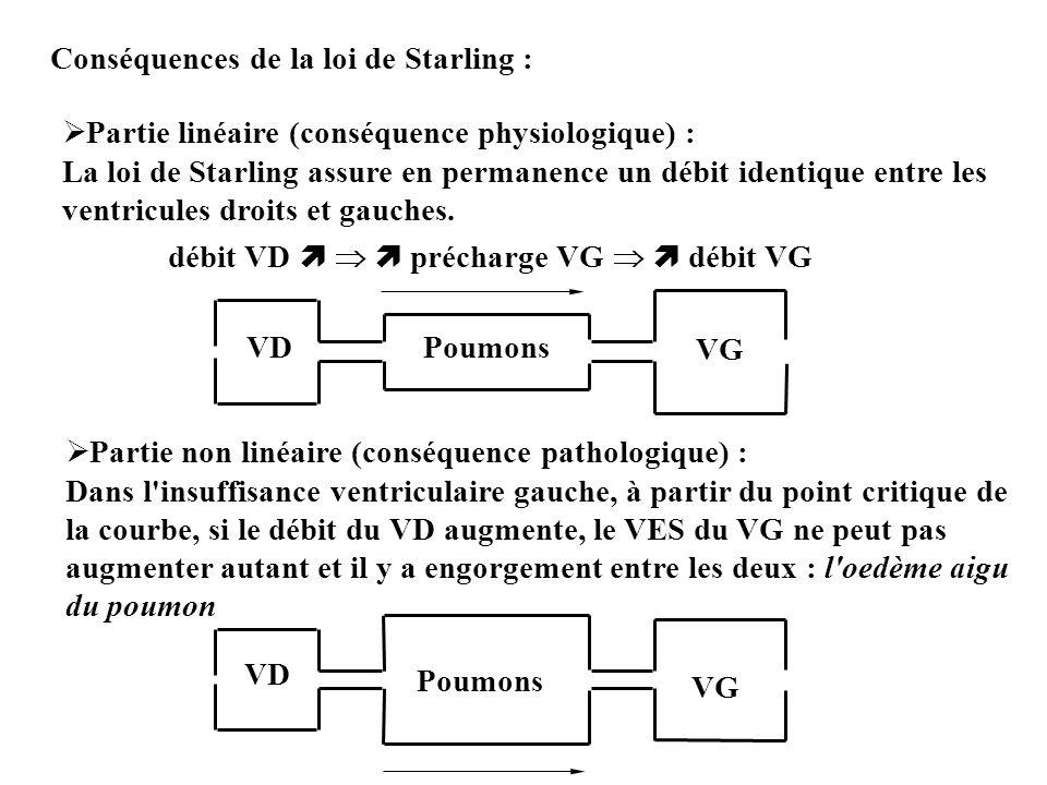 Conséquences de la loi de Starling : Partie linéaire (conséquence physiologique) : La loi de Starling assure en permanence un débit identique entre le