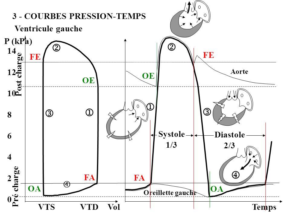3 - COURBES PRESSION-TEMPS Ventricule gauche Oreillette gauche Aorte P (kPa) 14 12 10 8 6 4 2 0 VTS VTD Vol Temps FA OE FA OE FE OA OA Systole 1/3 Dia