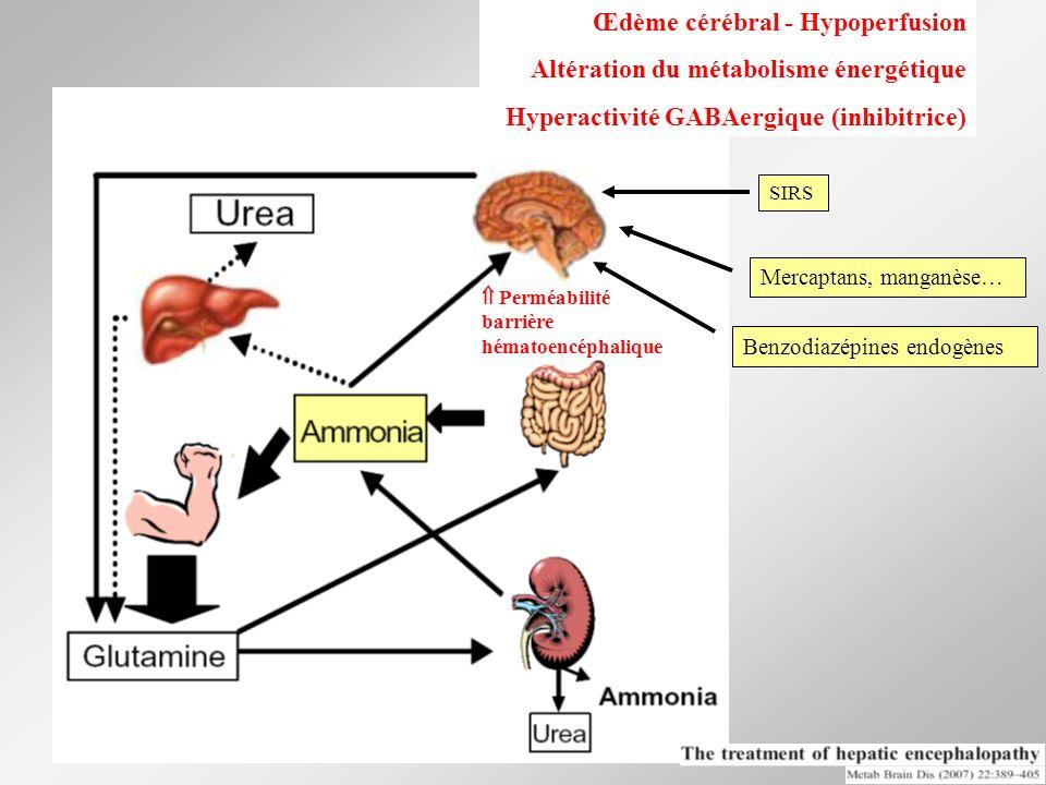 Œdème cérébral - Hypoperfusion Altération du métabolisme énergétique Hyperactivité GABAergique (inhibitrice) Benzodiazépines endogènes SIRS Mercaptans