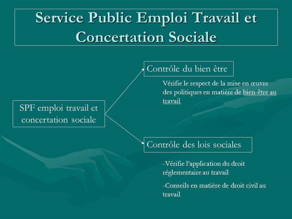 Service Public Emploi Travail et Concertation Sociale SPF emploi travail et concertation sociale Contrôle du bien être Vérifie le respect de la mise e