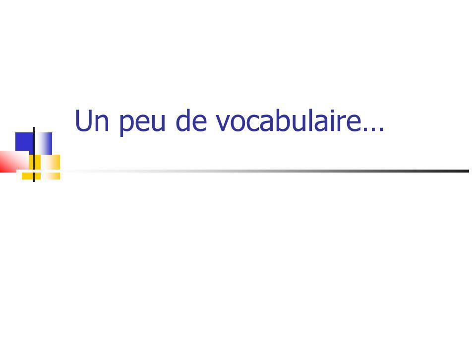 Un peu de vocabulaire…