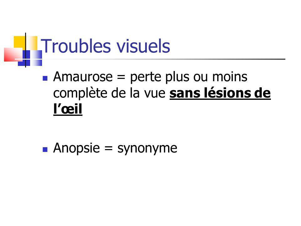 Troubles visuels Amaurose = perte plus ou moins complète de la vue sans lésions de lœil Anopsie = synonyme