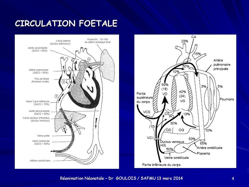 CIRCULATION FOETALE 4 Réanimation Néonatale – Dr GOULOIS / SAFMU 13 mars 2014