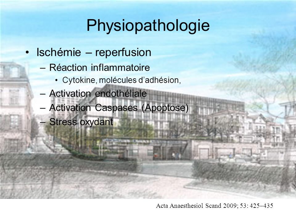 Physiopathologie Ischémie – reperfusion –Réaction inflammatoire Cytokine, molécules dadhésion, –Activation endothéliale –Activation Caspases (Apoptose) –Stress oxydant Acta Anaesthesiol Scand 2009; 53: 425–435