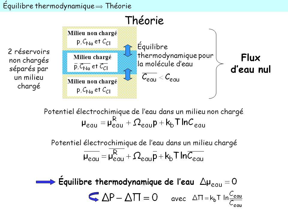 Théorie Équilibre thermodynamique Théorie Équilibre thermodynamique pour la molécule deau Milieu non chargé Milieu chargé Potentiel électrochimique de