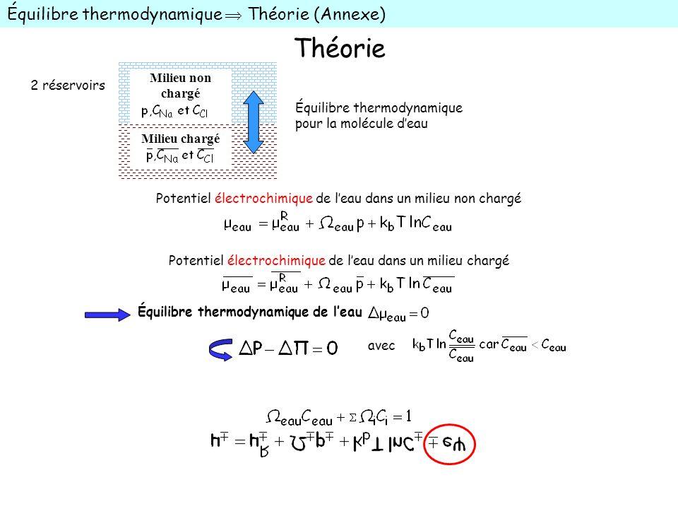 Théorie Équilibre thermodynamique Théorie (Annexe) Équilibre thermodynamique pour la molécule deau Milieu non chargé Milieu chargé Potentiel électroch