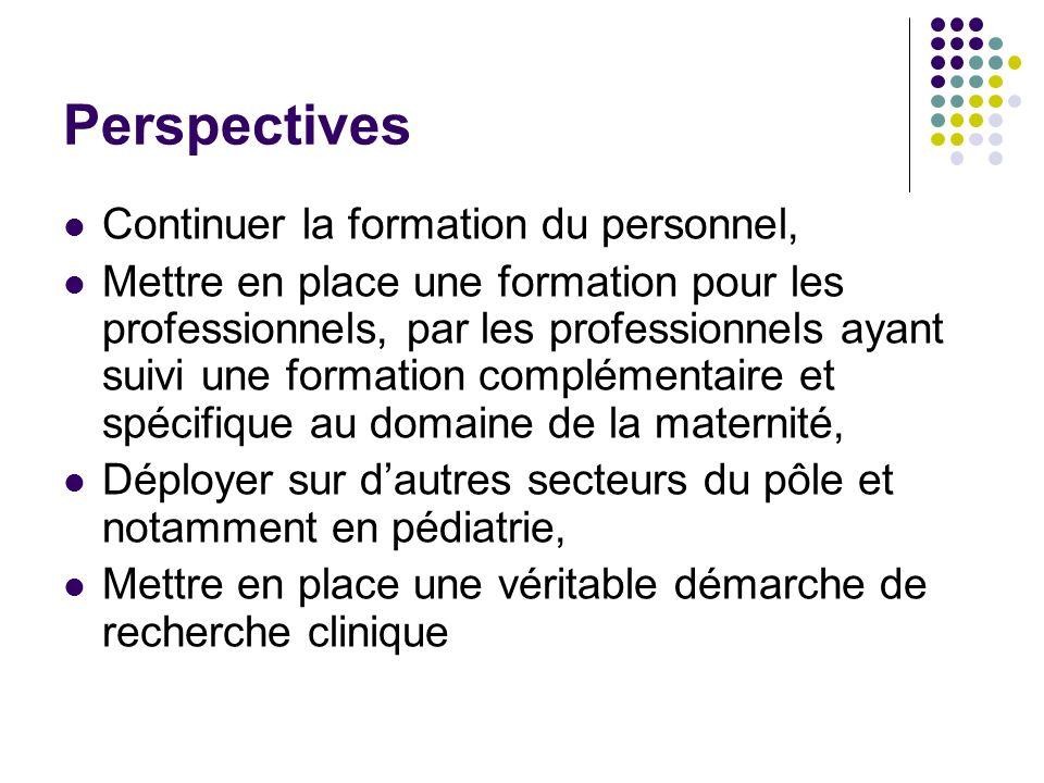 Perspectives Continuer la formation du personnel, Mettre en place une formation pour les professionnels, par les professionnels ayant suivi une format