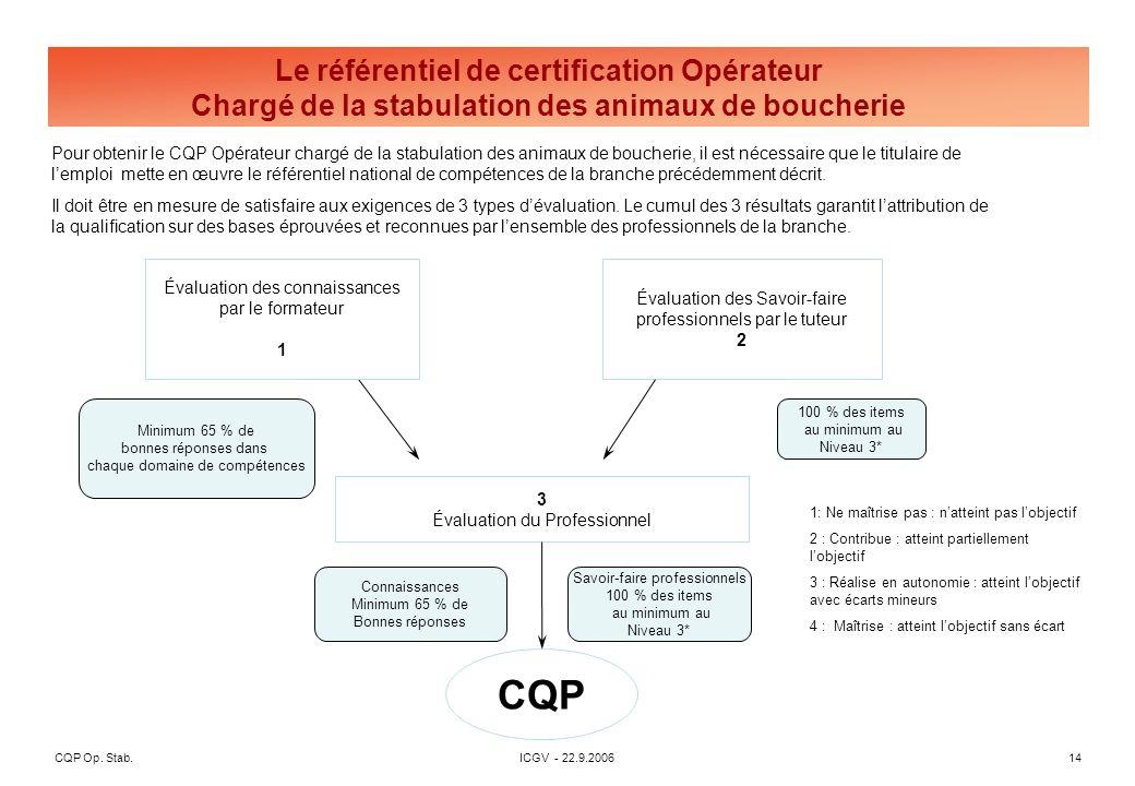 CQP Op. Stab. ICGV - 22.9.2006 14 3 Évaluation du Professionnel CQP Évaluation des connaissances par le formateur 1 Évaluation des Savoir-faire profes