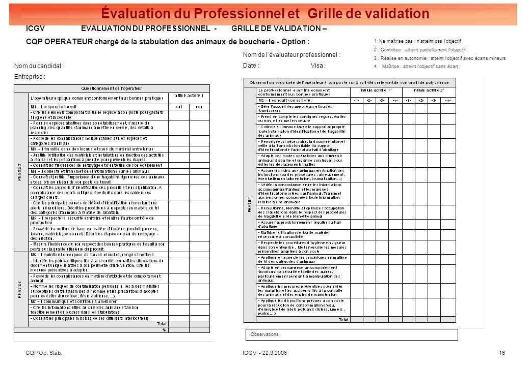 CQP Op. Stab. ICGV - 22.9.2006 16 Évaluation du Professionnel et Grille de validation Nom du candidat : Entreprise : Nom de lévaluateur professionnel