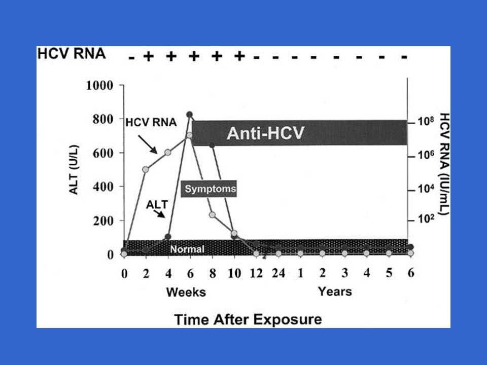 VHC hépatite chronique 80% CIRRHOSE 20%