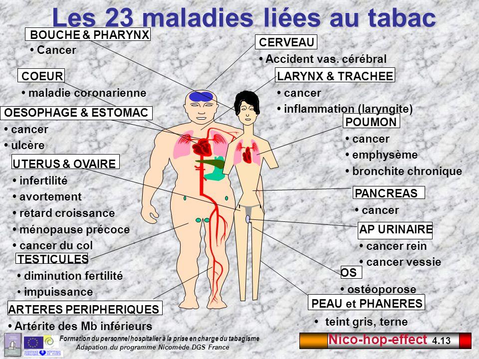 Nico-hop-effect 4.13 Formation du personnel hospitalier à la prise en charge du tabagisme Adapation du programme Nicomède DGS France Les 23 maladies l