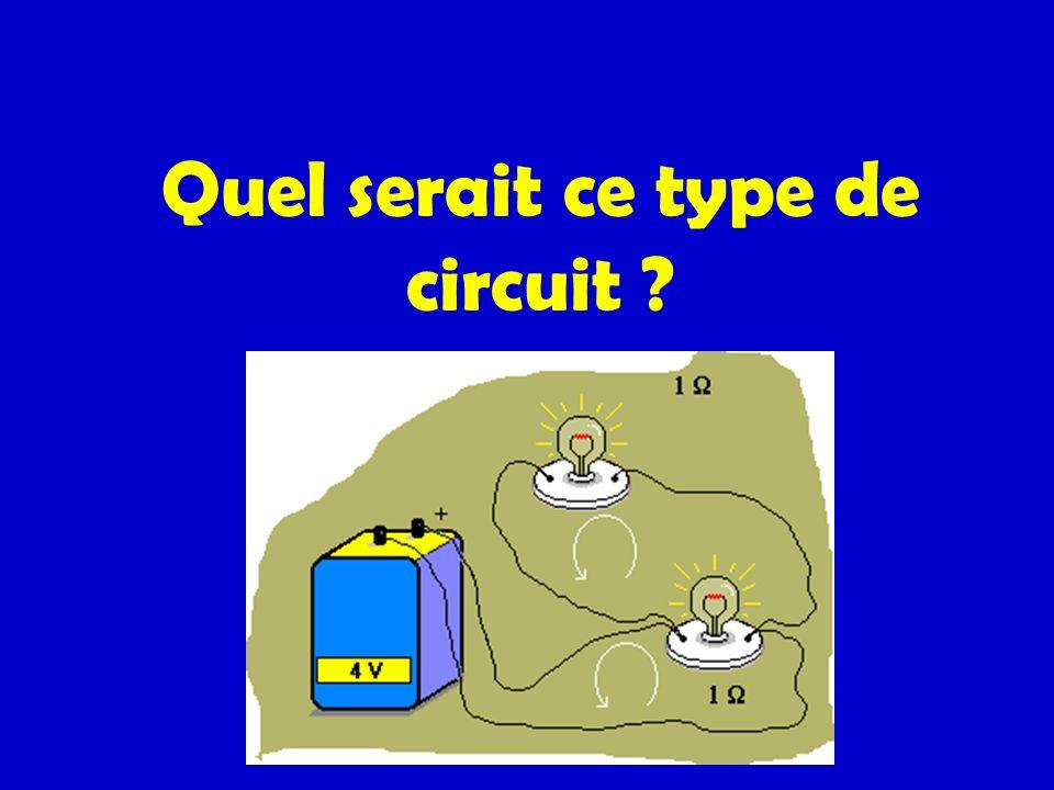 Quel serait ce type de circuit ?