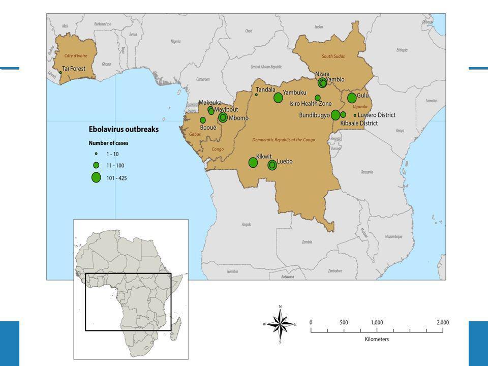 Actions Menées ou en cours au Mali La commande de léquipement pour la protection du personnel de santé est en cours (OMS) Mettre en place le matériel de prélèvement au niveau des points de contrôle; Rendre disponible les médicaments destinés à la prise en charge des cas éventuels Renforcer la surveillance épidémiologique