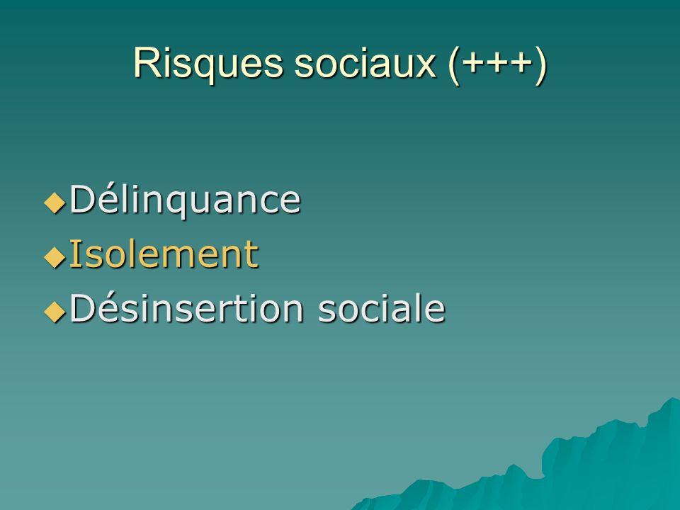 Risques sociaux (+++) Délinquance Délinquance Isolement Isolement Désinsertion sociale Désinsertion sociale