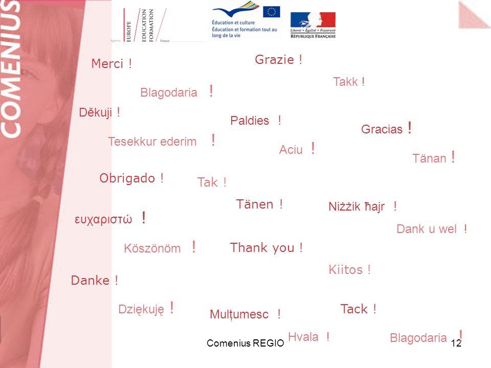 Comenius REGIO12 Merci ! Blagodaria ! Obrigado ! Tak ! Tänen ! Danke ! Dziękuję ! Grazie ! Takk ! Thank you ! Kiitos ! Gracias ! Tänan ! ευχαριστώ ! K